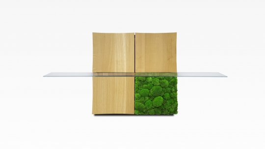 TERA-NAMI Regal 2x2 | modulares Regal, Eiche geölt, Moos Panel mit 1 Glasboden